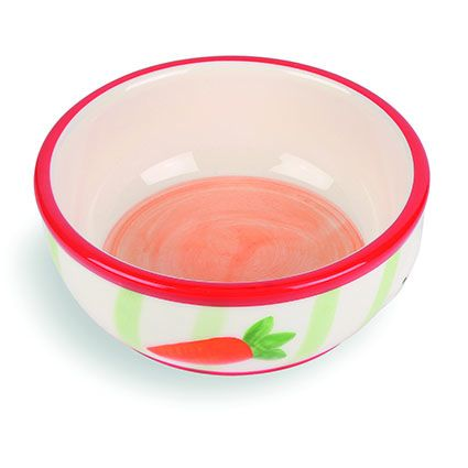 13187-carrot-stripe-pet-bowl.jpg