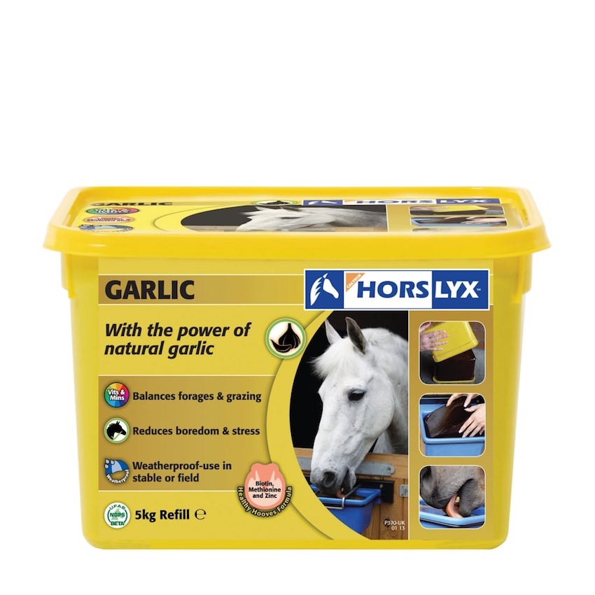 Horslyx-Garlic-Stable-Lick.jpg