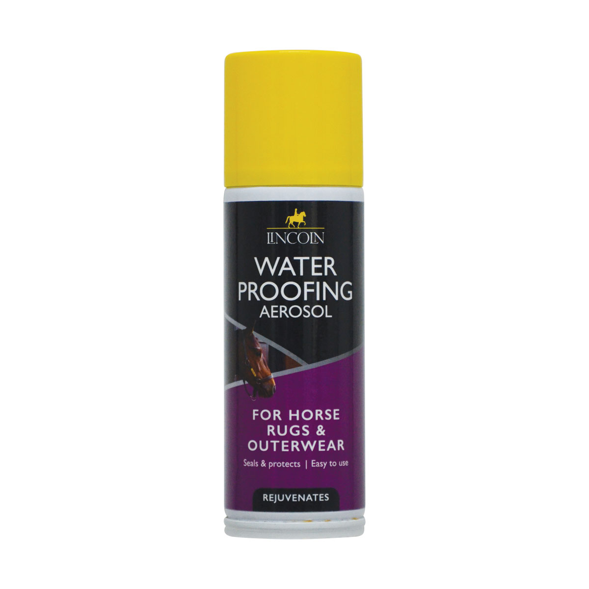 PR-4315-Lincoln-Water-Proofing-Aerosol-01.jpg